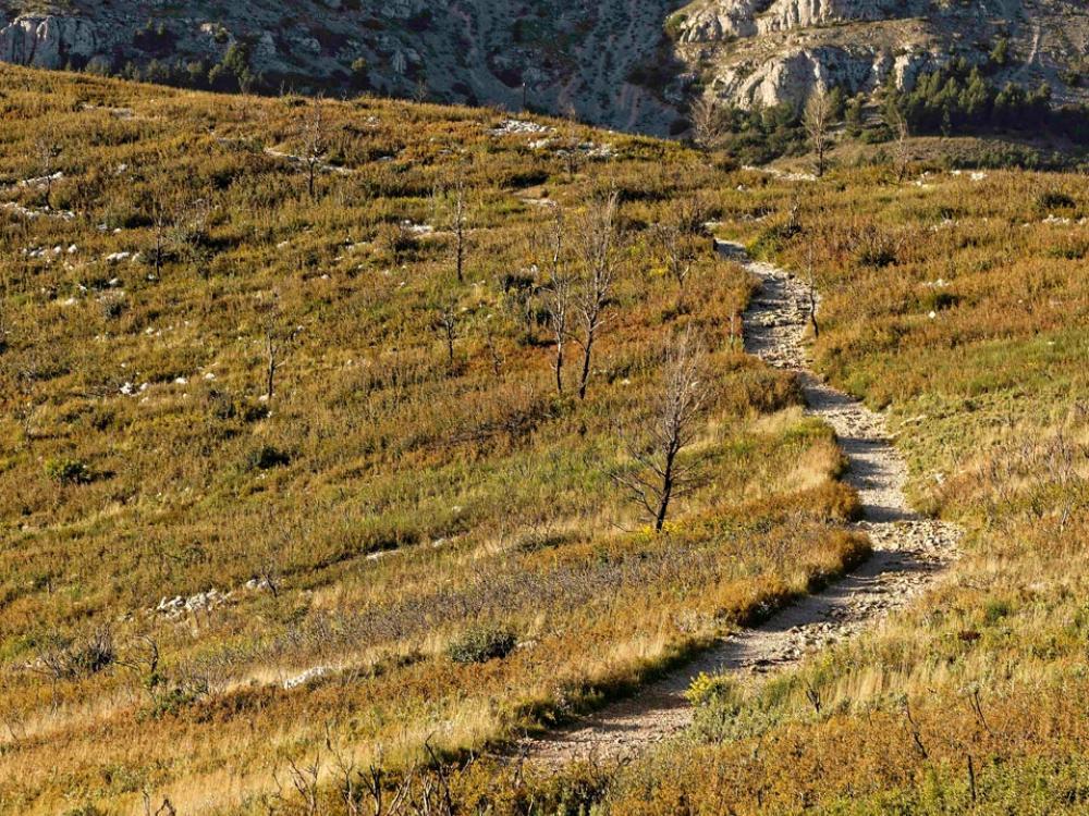 Sentier de randonnées