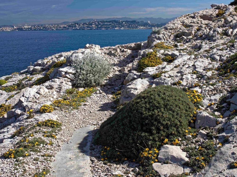 Sentier randonnées front de mer